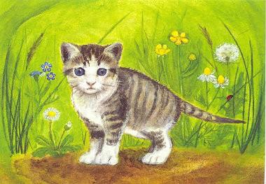 Postkarte Kätzchen