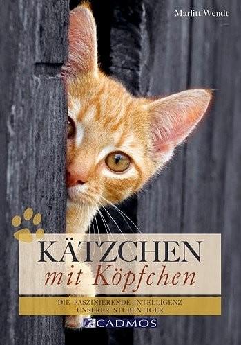 Buch: Kätzchen mit Köpfchen