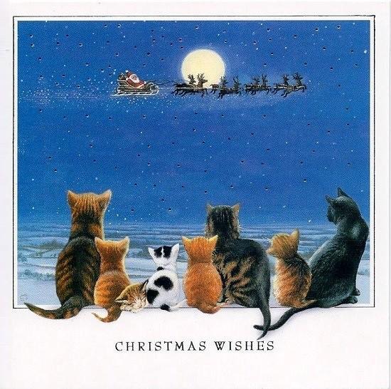 Weihnachtskarte quadr. Cat Tales