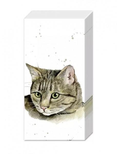 Pocket Tissues Farmfriends Cat