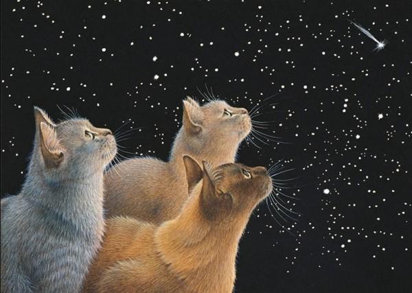 Blank Card Three Feline Dignitaries