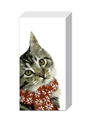 Taschentücher Kitty