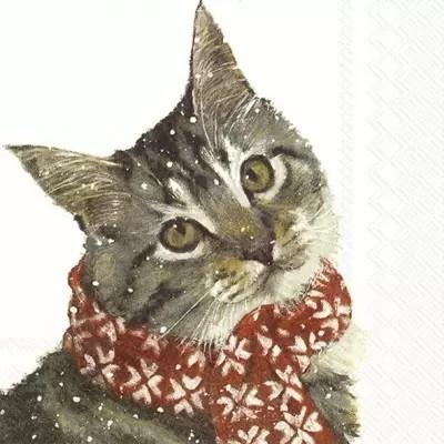 Servietten Kitty