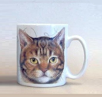 Becher Tabby Cat