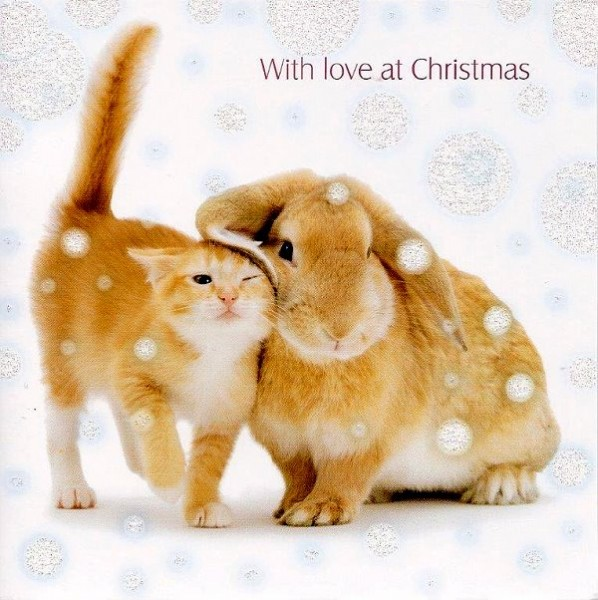 Weihnachtskarte quadr. Christmas Companions