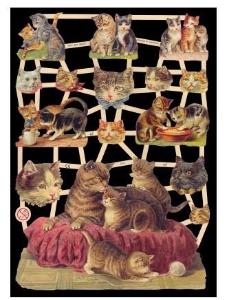 Glanzbild Kitten, 1 Bogen