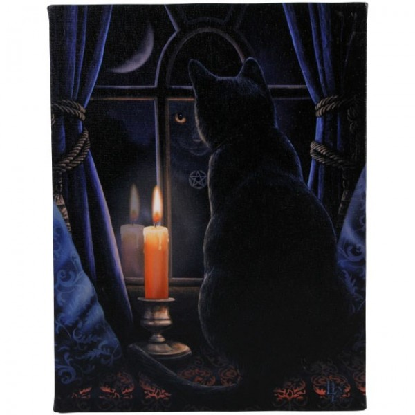 Canvas Art 19 x 25 cm Midnight Vigil