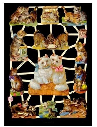 Glanzbild Katzenduo,1 Bogen