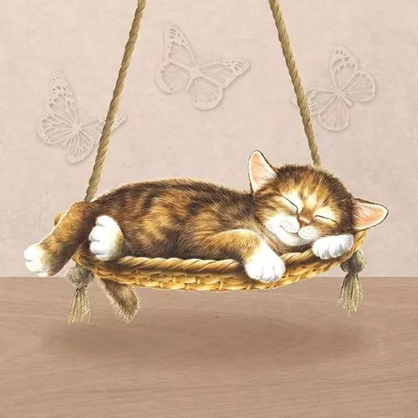 Napkins Dreaming Cat