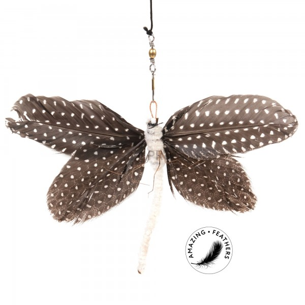 Papillon Pepita Butterfly attachment