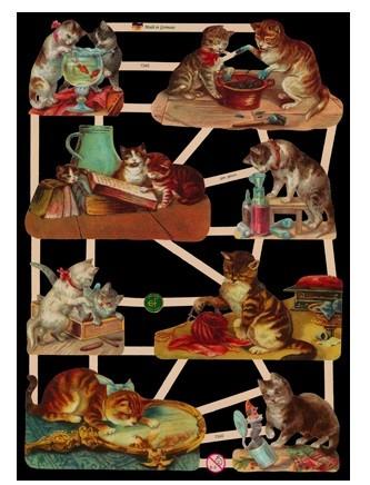 Glanzbild Neugierige Katzen, 1 Bogen