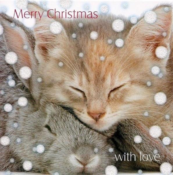 Weihnachtskarte quadr., Cosy Christmas